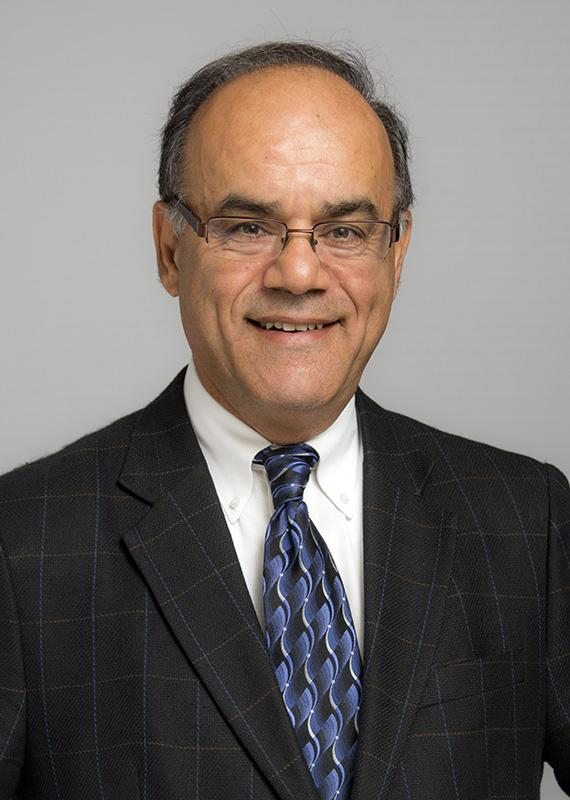 Mohammad Ali E.  Ozbeki