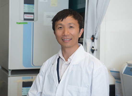 Zhengping Yi Ph.D.