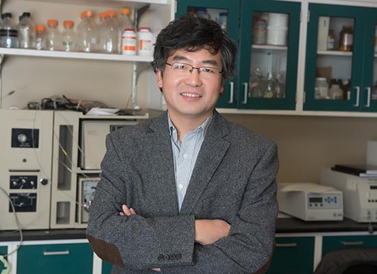 Zhihui Qin Ph.D.