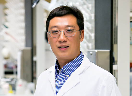 Wanqing Liu, Ph.D.
